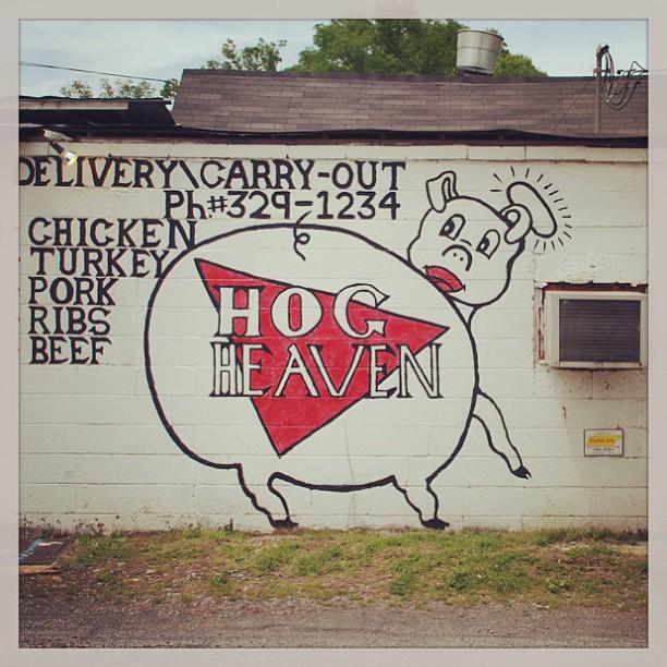 The Hog Iphone App