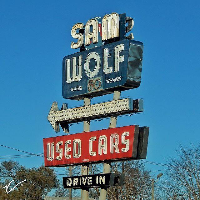 Sam Wolf